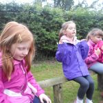 Forest Schools 10