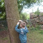 Forest Schools 28