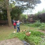 Forest Schools 30