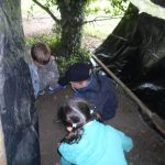 Forest Schools 42