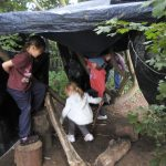 Forest Schools 47