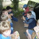 Forest Schools 61
