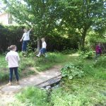 Forest Schools 67